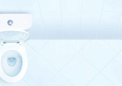 I dag er det «Verdas toalettdag»